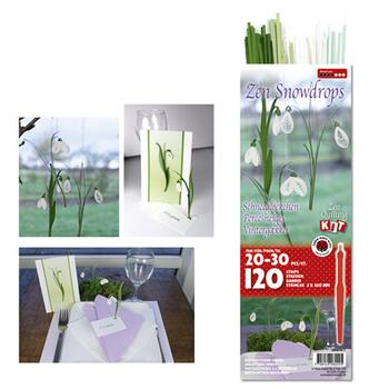Zen Snowdrops kit with Tool