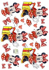 3D Dan-design Minnie Disney